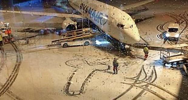 Пенис на снегу